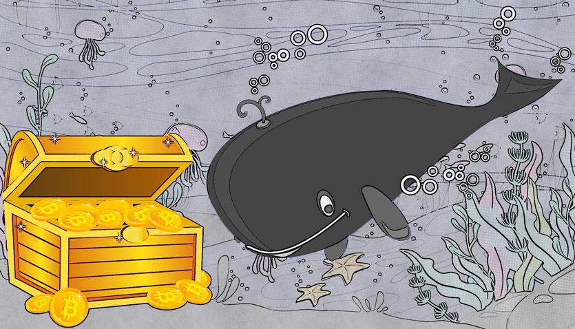نهنگ ارز دیجیتال
